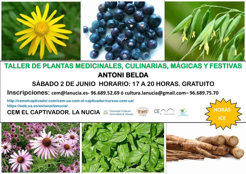 Taller Plantas Medicinales Junio 2018